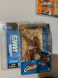 Collectable Lebron Port Coquitlam