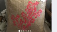 Pillow Pottery Barn Lilly Pulitzer Indoor Outdoor BETHESDA