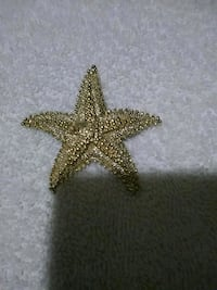 Starfish pin Indianapolis, 46225