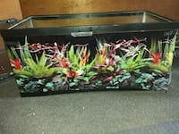 Large Reptile Tank Includes; Supplies/Full set-up Manchester, 03104