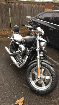 black and gray cruiser motorcycle Longmont, 80503