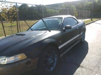 1999 Ford Mustang Los Angeles