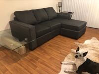 Couch/ Chase Sleeper Sofa Charlotte, 28277