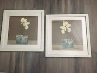 Double-Matted Floral Prints Alexandria, 22314