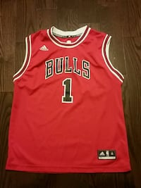 Chicago bulls basketball jersey