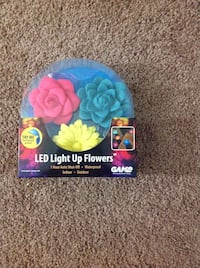 LED Light Up Flowers....3 in Package. Piscataway, 08854