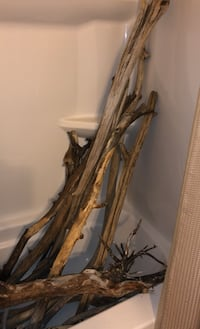 Driftwood Prices Vary
