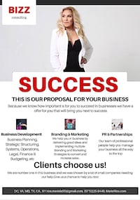 Business consulting Ashburn