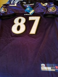 Ravens Jersey Demetrius Williams signed Westminster, 21158