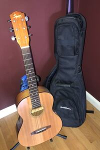 Guitar and case.