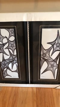X-ray Starfish Framed Photos Arlington, 22203