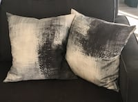 West Elm Pillow Set (2) Arlington, 22202