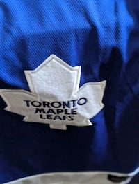 Maple Leafs dog jersey