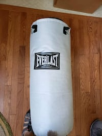 Everlast Heavy Punching bag Chantilly, 20152