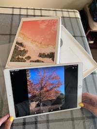 "iPad Pro 10.5"" - 64GB - WiFi-Rose Gold Bristow, 20136"
