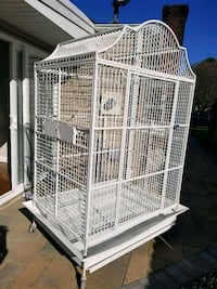 Huge Macaw parrot animal cage