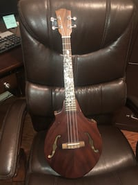 brown and black electric guitar Rowlett, 75089