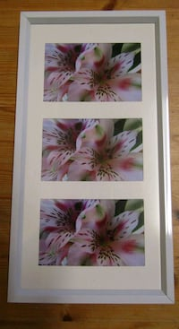 Framed photography of flowers London