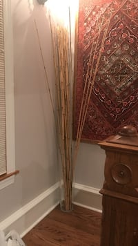 glass vase with bamboo sticks Chicago, 60630