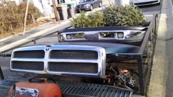 Hood bumper and grill