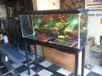 Black frame clear glass pet tank Modesto, 95358