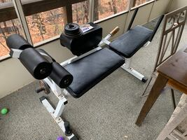 Dual motion Ab cruncher with weights!