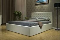 DEAL 50% OFF! hydraulic queen sized frame and mattress