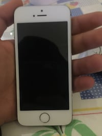 IPhone 5s  in argento con custodia nera