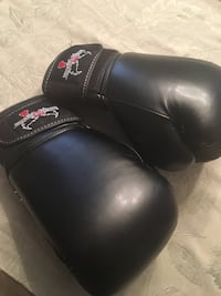 Ladies boxing gloves Mississauga, L5R
