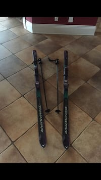 pair of black Dynastar snow ski blades and stick Potomac, 20874