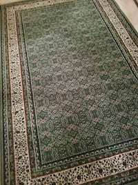 Beautiful thick rug w/ pad