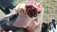 pair of brown leather cowboy boots Abilene