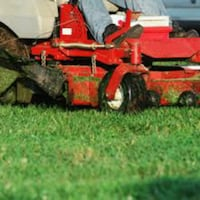 services cutting lawn Raleigh, 27610