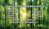 Shainy tree service and more service Culpeper