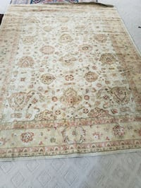 8' x 11' Rug. No stains Fairfax, 22030