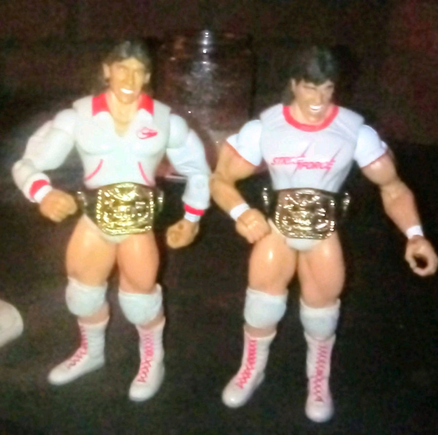 Photo Strike Force WWE action figures