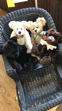 $85.00 for each Bear.  Handmade with Real Fur.  Moveable arms & legs.  Paid over $150.00 for each.  Also, Victorian Baby Buggy.  Early 1900's.  Out standing condition.  Paid $445.00, selling for $175.00.  Serious inquires only please. Denver, 80202