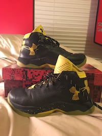 Curry 2.5 GS  Saint Charles, 63301