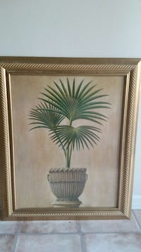 palm tree picture  Myrtle Beach, 29588
