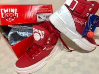 Patrick Ewing 33 hi shoes 43 km