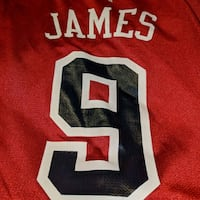 LEBRON james Team Usa jersey Make offer Garfield Heights, 44125