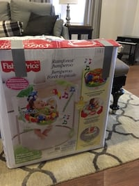 white Fisher-Price rainforest jumperoo box Vaughan, L4H 3N3