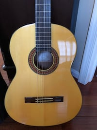 Takamine Acoustical Guitar Ashburn