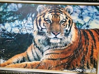 Siberia Tiger painting Print with beautiful frame Surrey, V3W 2N2