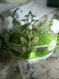 green and white leaf plant 2634 km