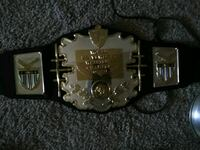 silver and black championship belt