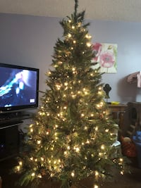 Pre lit Christmas tree , we bought it last Christmas for 249.99+tax . The reason we sell it we decide to get a real tree this year....I'm willing to negotiate with the price. Elmira, N3B 1K1