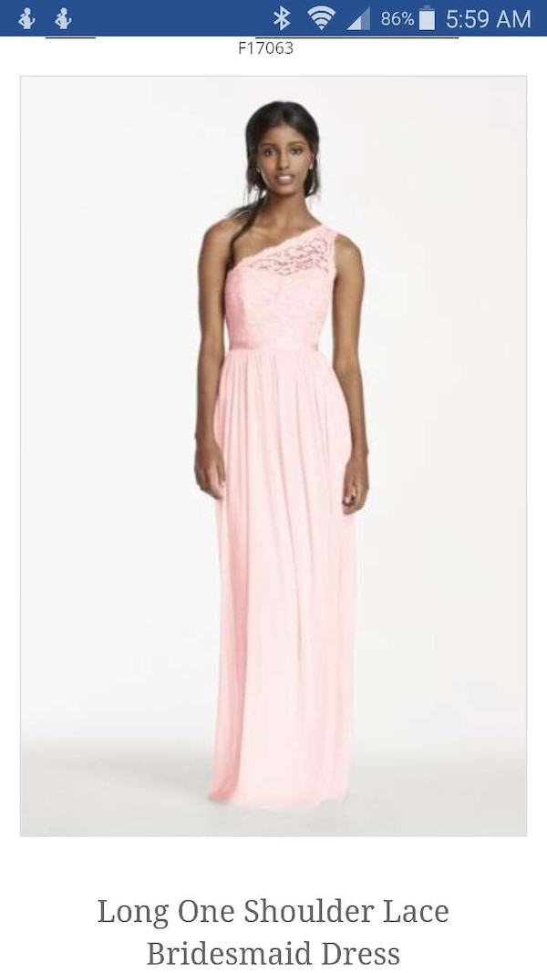 1b4d9d25c69 Used David s Bridal bridesmaid dresses F17063 for sale in Okeechobee ...