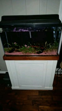 28 gallon aquarium  Long Beach, 90806