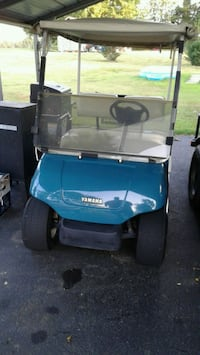 blue and black golf cart Mayfield, 42066